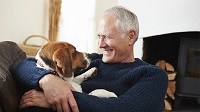 The Surprising Health Benefits Of Pets