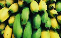 Here's One Reason Why You Should Eat a Banana Every Day
