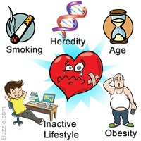 Knowing The Contributing Factors Of Heart Disease