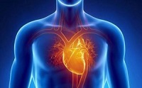 What Is Brugada Syndrome, Sudden Cardiac Arrest?