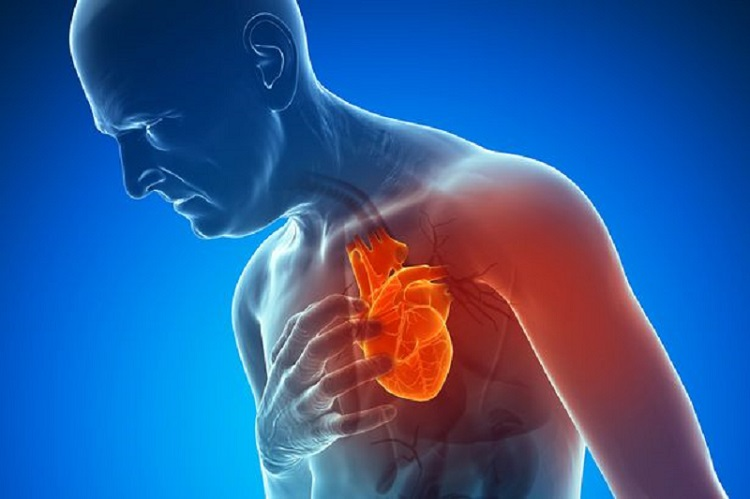 Know more about young heart attacks and death